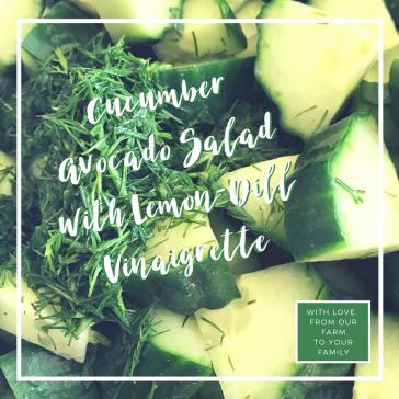 Cucumber Avocado Salad with Lemon-Dill Vinaigrette