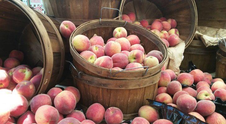 #thursdaythrive   Peaches