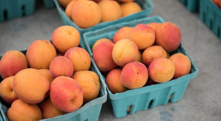 #thursdaythrive   Apricots