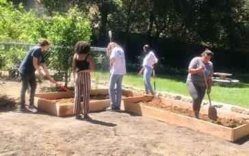 Muse School Garden Grant Update!!