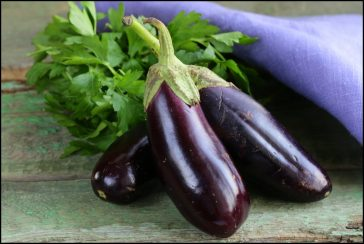 #thursdaythrive   Eggplant