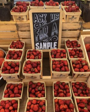 #treatyourselftuesday   Apricot Lane Farms