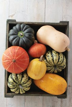 #thursdaythrive  Squash