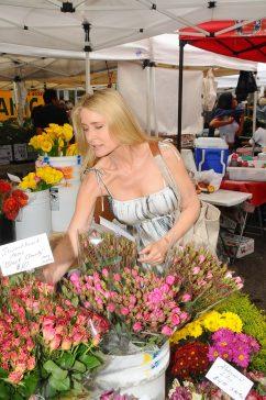 Melrose Market Visit