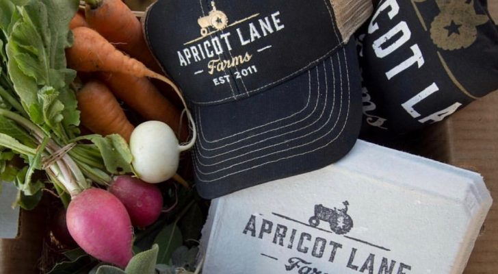 #wildaboutwednesday   Apricot Lane Farms
