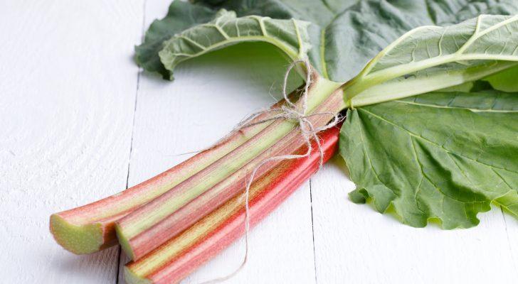 #thursdaythrive   all about Rhubarb!