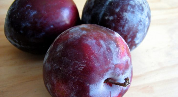 #thursdaythrive    all about Plums!