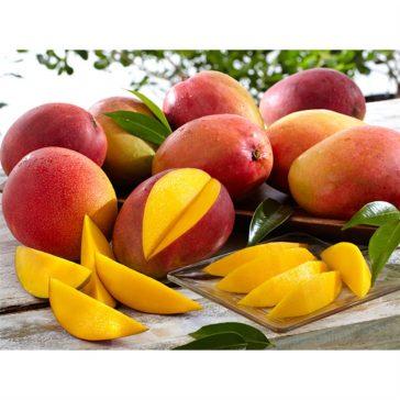 #thursdaythrive   all about Mangos