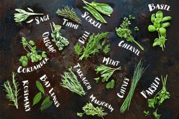 #thursdaythrive   all about Fresh Herbs