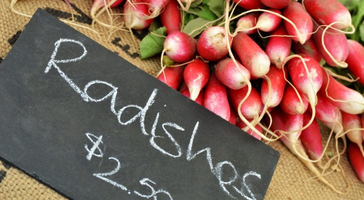 #thursdaythrive  all about Radishes