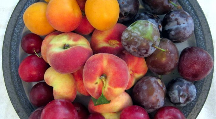 #thursdaythrive    all about Stone Fruit!