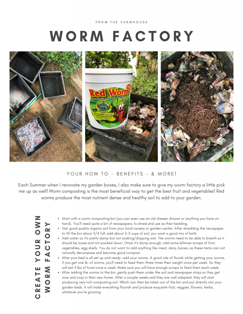 Worm Factory - your guide to the benefits & creating your