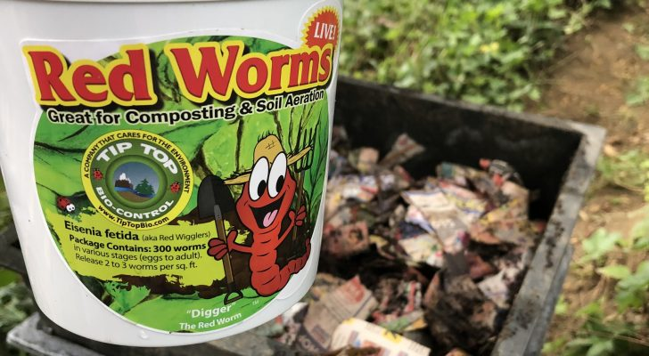 Worm Factory - your guide to the benefits & creating your own!
