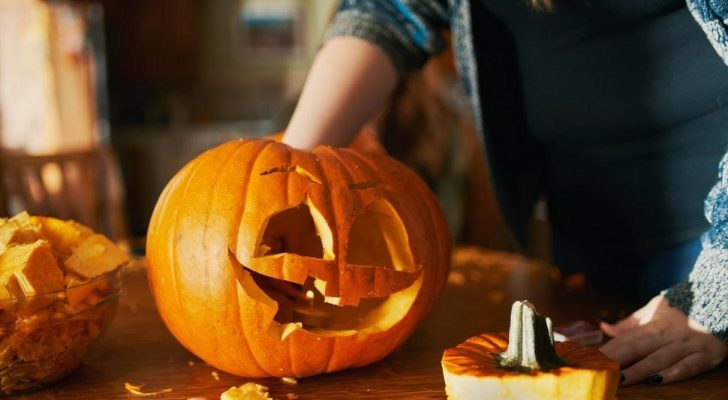 Farmhouse How To: Grow your own Pumpkins from your Jack-o-Lanterns!