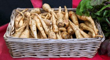 #thursdaythrive   all about Parsnips!