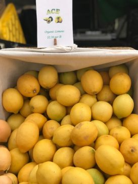 #thursdaythrive   all about Lemons!