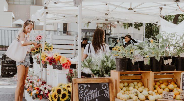 Calabasas Market Visit