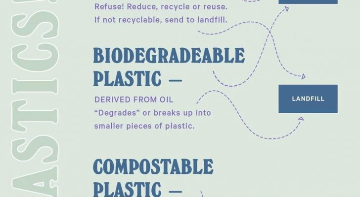 Reducing Waste in the New Year