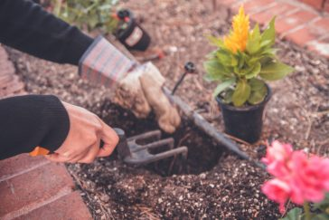 Plant a Flower Day - Spring Garden